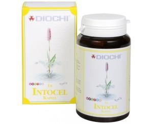Diochi Intocel 90 kapslí
